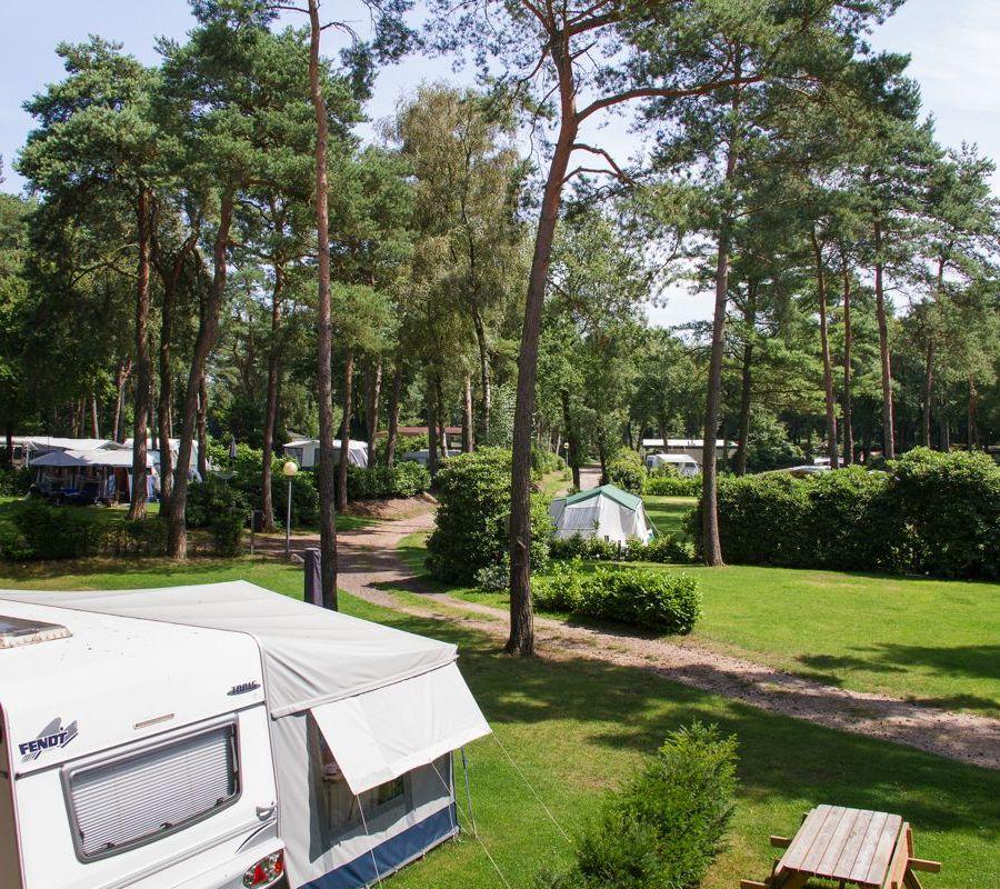 Camping-Zuid-Ginkel-Ede_kamperen_01.jpg
