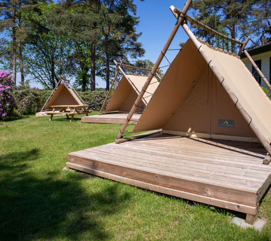 Camping-zuid-ginkel_bezoek-juni-16.jpg