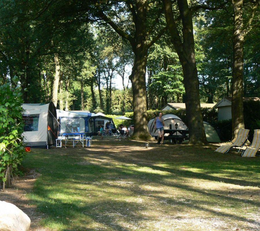 Camping-Zuid-Ginkel-Ede_kamperen_11.jpg