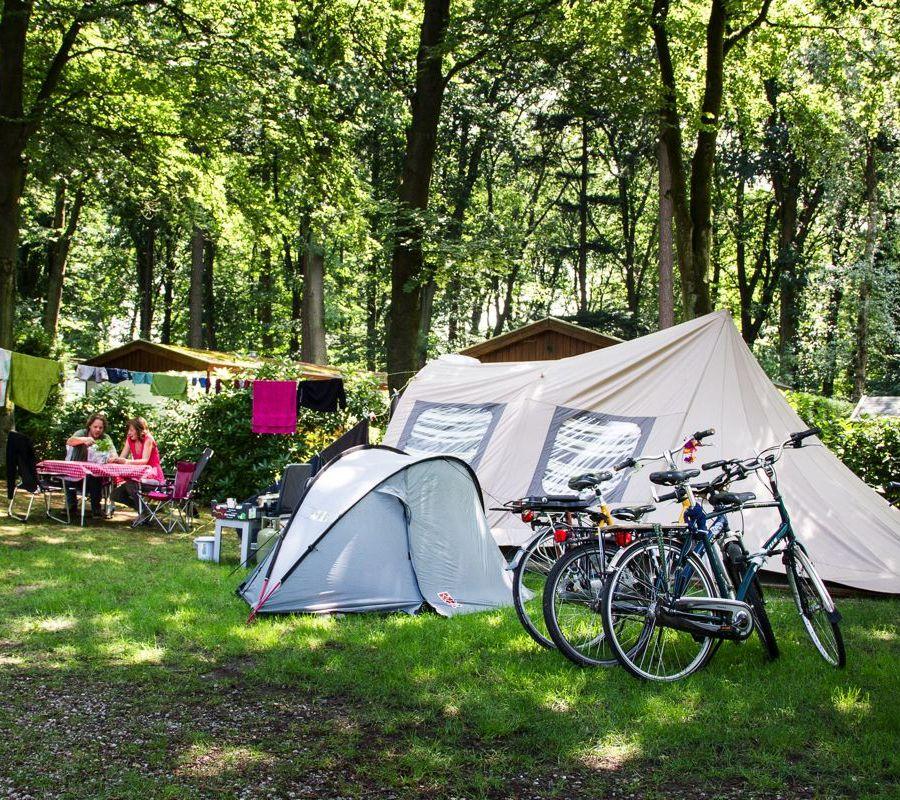 Camping-Zuid-Ginkel-Ede_kamperen_02.jpg