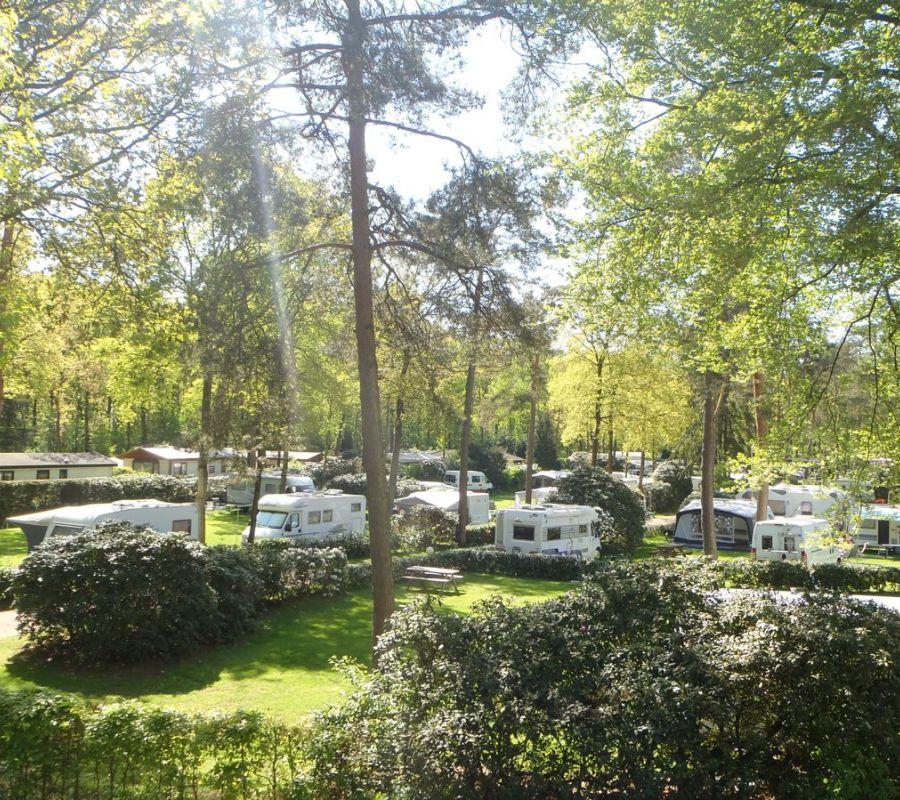 Camping-Zuid-Ginkel-Ede_kamperen_05.jpg